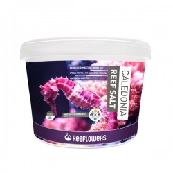 Reeflowers Caledonia Reef Salt 22.5kg Bucket