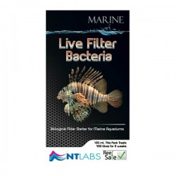 NT Marine Live Filter Bacteria 100ml
