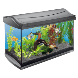 Tetra Aqua Art Aquarium 60L - Anthracite