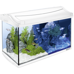 Tetra Aqua Art Aquarium 60L - White