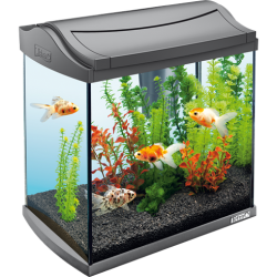Tetra Aqua Art Aquarium 30L - Anthracite