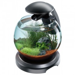 Tetra Cascade Globe White Aquarium 6.8L *New*