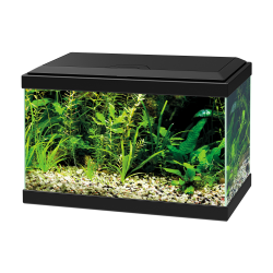 Ciano Aqua 20 Aquarium With LED Light - Black