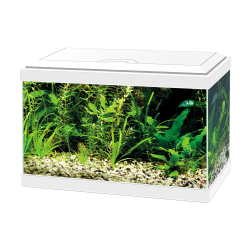 Ciano Aqua 20 Aquarium With LED Light - White