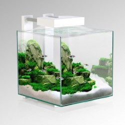 Ciano Nexus Pure 15 Cube Aquarium With LED Light