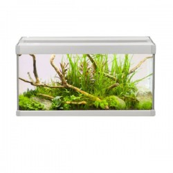 Akvastabil Family Aquarium 60 x 30 x 30cm *New*