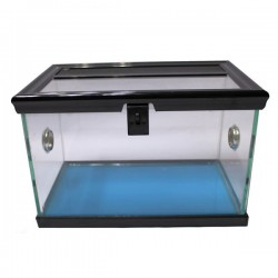 Betta Spider Tank 30cm x 18cm x 20cm - Black