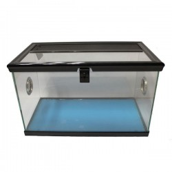 Betta Spider Tank 40cm x 22cm x 25cm - Black