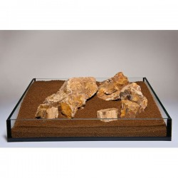 Fossilized Wood 20kg *New Box Size*