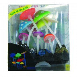 Betta Neon Jelly Lotus Anemone *New Price*