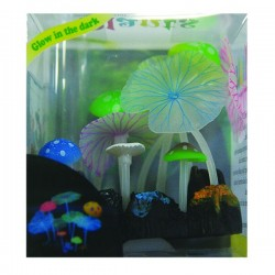 Betta Neon Jelly Mixed Anemone *New Price*