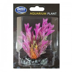 Betta Choice 9cm Purple Aloe Plant