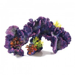 Classic Large Coral Garden
