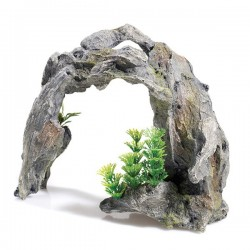 Classic Driftwood Arch With Plants